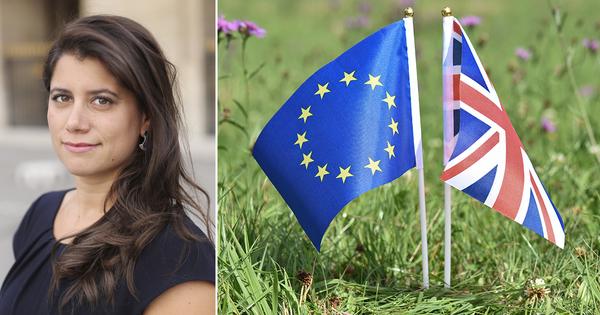 Brexit: quelles conséquences pour la protection de l'environnement au Royaume-Uni?