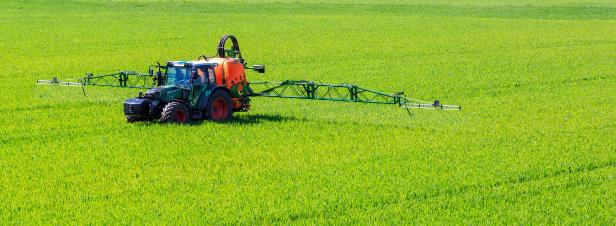 Glyphosate : l'Anses retire 132 autorisations de produits contenant le co-formulant POE-Tallowamine