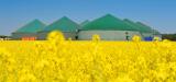 Biogaz et biodiversité : GRTgaz, la FNSEA et les Chambres d'agriculture signent une convention