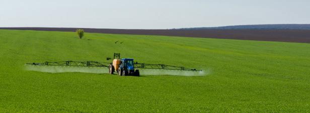 Le glyphosate n'est pas cancérogène selon l'Agence européenne des produits chimiques