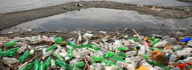 Des chercheurs créent par hasard une enzyme destructrice de plastique