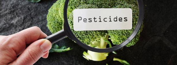 Toxicité cumulée des pesticides: l'Efsa finalisera ses premières évaluations d'ici fin 2018