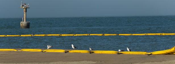 Une pollution aux hydrocarbures touche le littoral varois
