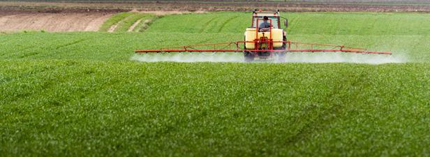 L'Anses réexamine l'autorisation des pesticides à base de métam sodium