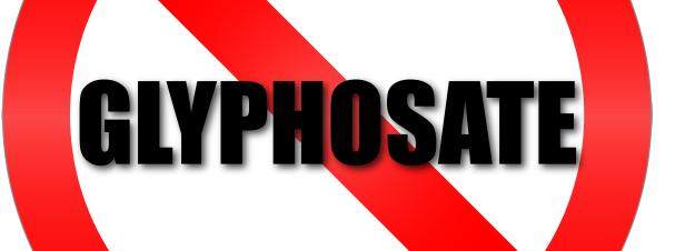 L'Anses retire 132 autorisations de produits à base de glyphosate