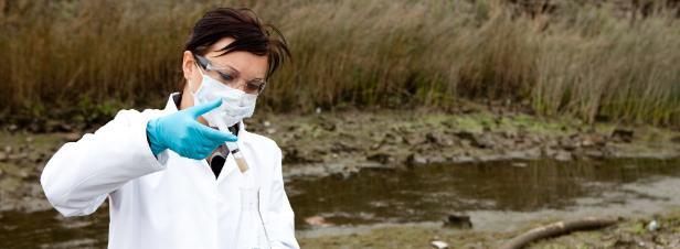L'Agence européenne pour l'environnement alerte sur l'effet cocktail des produits chimiques