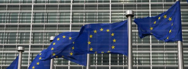 Le Parlement européen adopte une résolution sur les perturbateurs endocriniens à une très large majorité