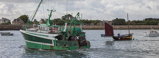 La pêche électrique interdite dans les eaux françaises depuis le 14 août