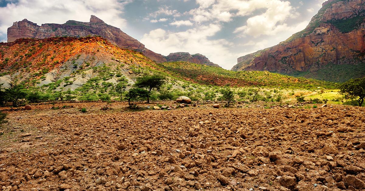 Dégradation des sols: les Etats adoptent l'objectif de neutralité d'ici 2030