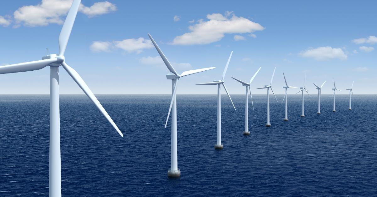 Éolien en mer: 10% de la taxe seront affectés à l'Office français de la biodiversité