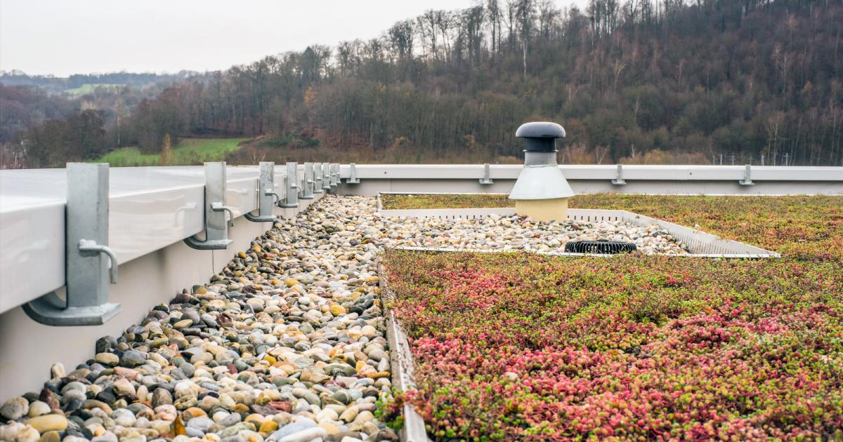 Gestion des eaux pluviales à la parcelle: l'agence de l'eau Loire-Bretagne lance un appel à initiatives