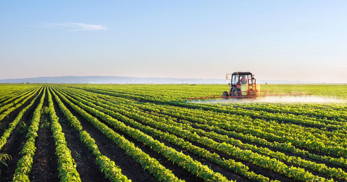 Pesticides SDHI: trois associations demandent le retrait d'autorisations de mise sur le marché