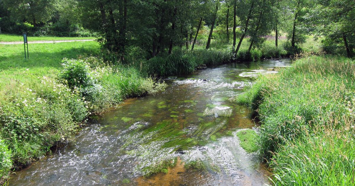 Adaptation au changement climatique: une boîte à idée à l'Agence de l'eau Loire-Bretagne