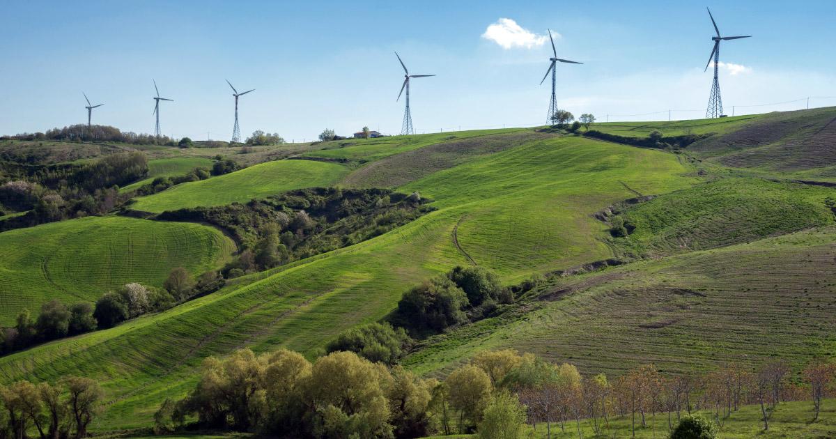 FNE dépose une plainte pour mortalité d'espèces protégées sur un parc éolien de l'Aveyron