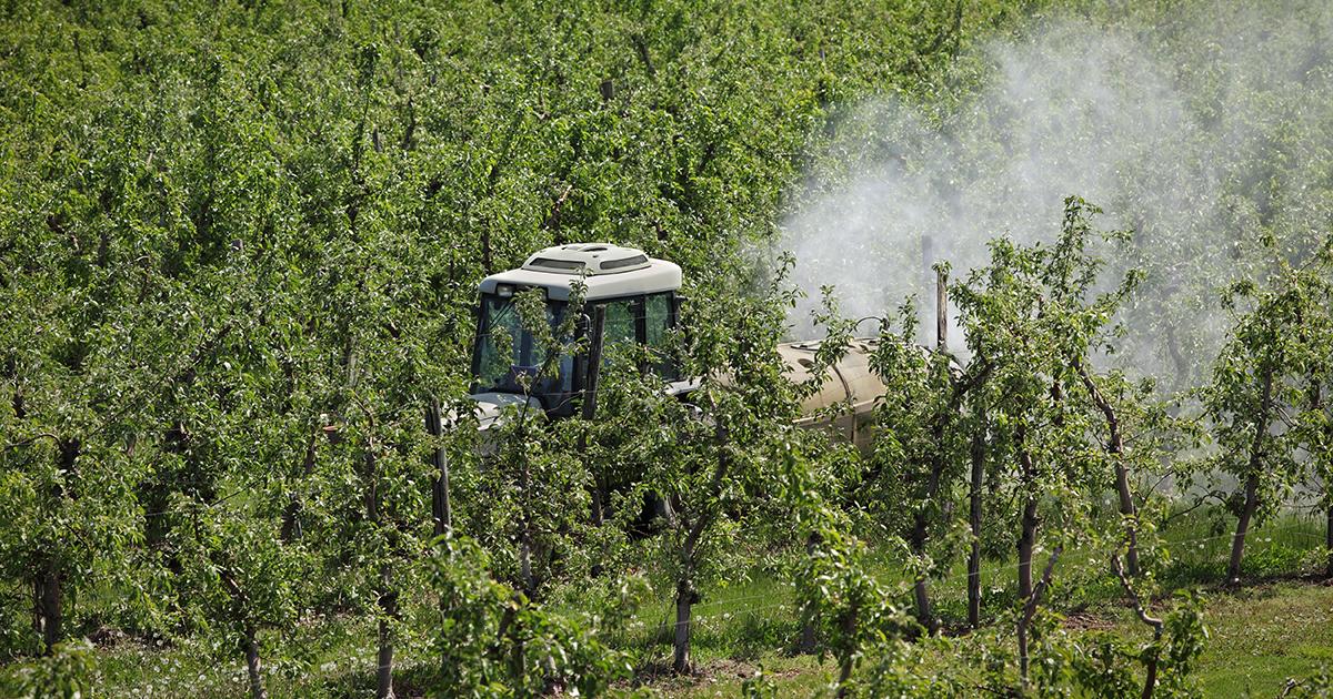 Zones de non traitement aux pesticides: 30 millions d'euros pour aider les agriculteurs