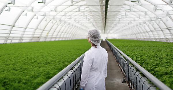«Cultiver autrement»: dix projets scientifiques pour réduire la dépendance aux produits phytosanitaires