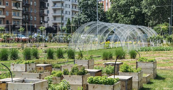 Innovations «low-tech»: l'Ademe Île-de-France retient onze projets