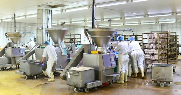 Diagnostics «gaspillage alimentaire»: un outil pour les industries agro-alimentaires