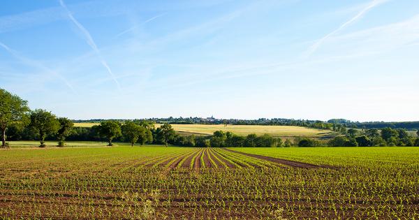 Politique agricole commune: les États membres arrêtent leur position