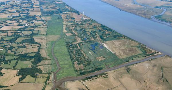 Site du Carnet: le projet suspendu en attendant une actualisation des inventaires faune/flore