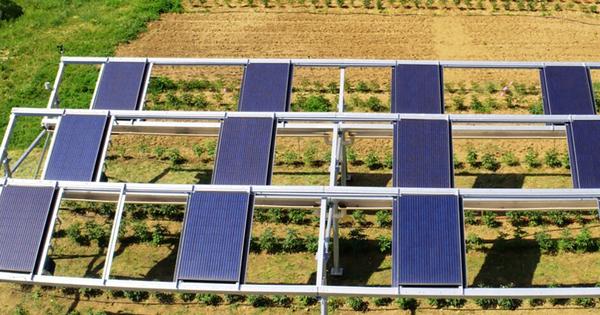 Agrivoltaïsme: RES et Ombrea s'associent pour développer des ombrières pilotables