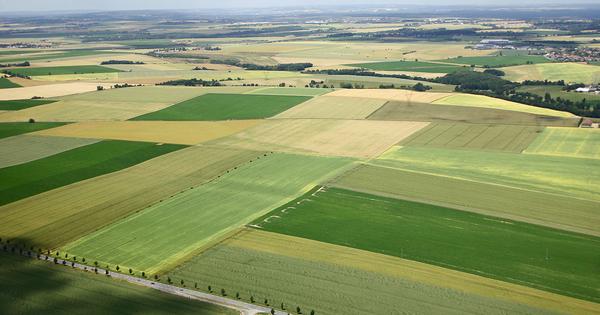 Politique agricole commune: accord informel sur les soutiens financiers jusqu'en 2022