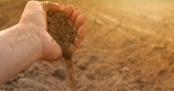 La Commission européenne lance un Observatoire pour surveiller la santé des sols