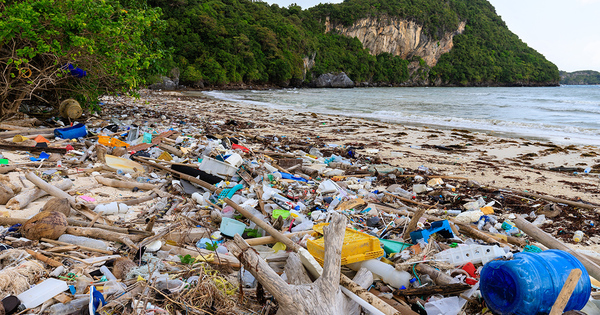 L'Ademe lance un appel à manifestation d'intérêt pour promouvoir le zéro plastique en Martinique
