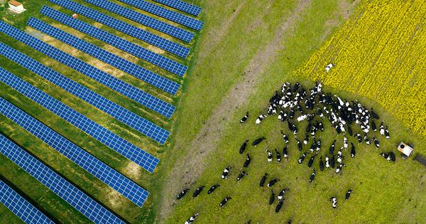 Photovoltaïque sur terrains agricoles: EDF signe une charte avec les instances agricoles
