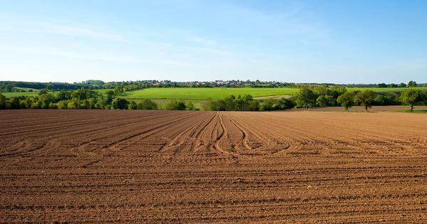 L'Inrae publie un nouveau modèle d'évaluation du carbone piégé dans les sols