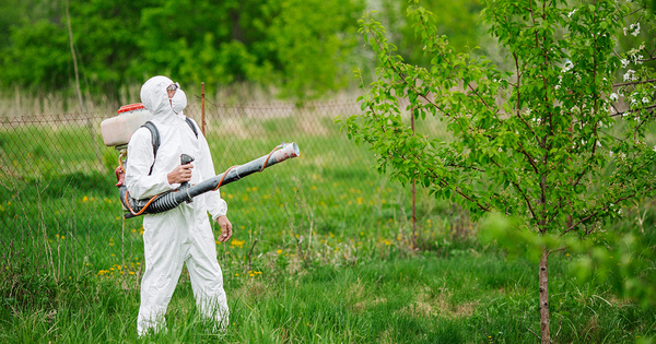 La justice refuse de suspendre le premier arrêté anti-pesticides nouvelle formule