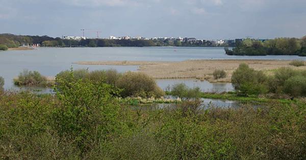 Un décret crée la réserve naturelle nationale des Étangs et rigoles d'Yveline
