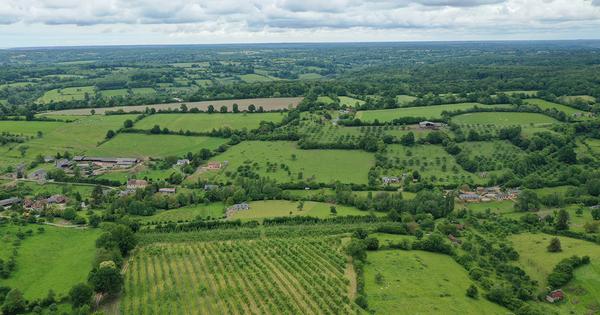 L'Inrae et Planet A s'associent pour développer un indicateur d'évolution du carbone des sols agricoles