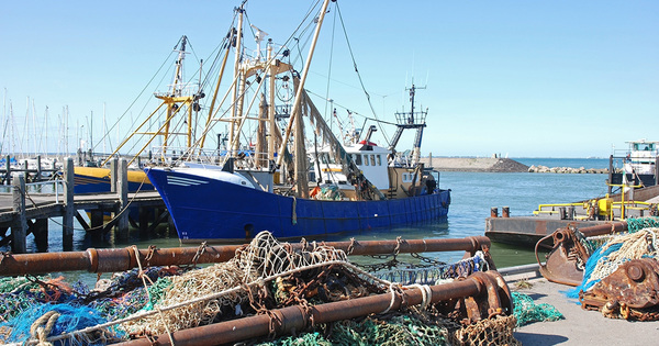 Pêche électrique: l'interdiction entre en vigueur le 1er juillet en Europe