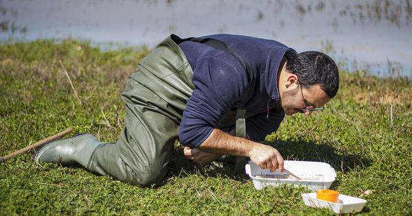 Génie écologique: deux nouvelles qualifications pour des travaux de qualité