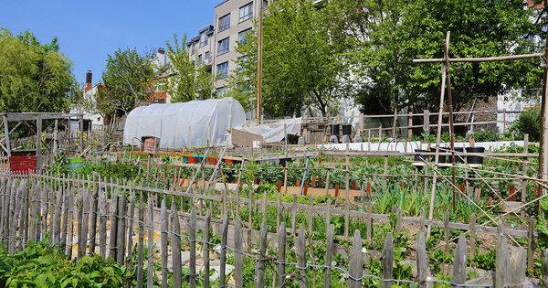 Appel à projets «Les quartiers fertiles»: 48 nouveaux lauréats