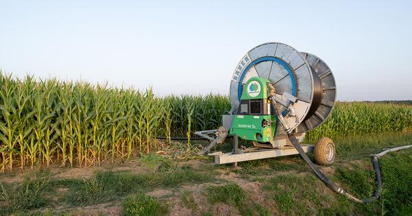 Un «Varenne agricole de l'eau et de l'adaptation au changement climatique» prévu d'ici l'été