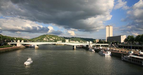 Pollution aux pesticides dans le port de Rouen: la caractérisation des impacts environnementaux à affiner