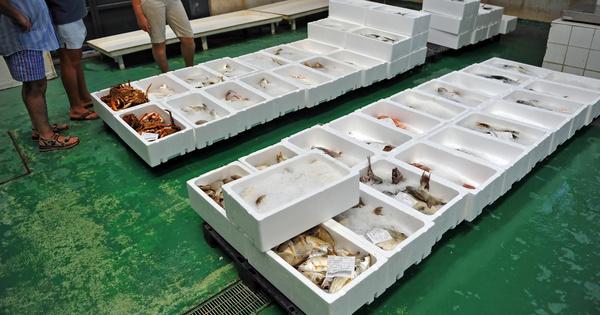 Pêche et biodiversité: la France mise en demeure par la Commission européenne
