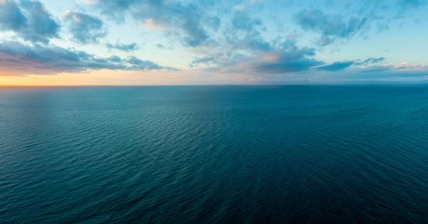 Ocean approved: un label pour distinguer les entreprises impliquées dans la réduction de leurs impacts