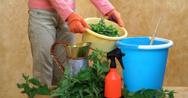 Un cahier des charges fixe les critères des PNPP à usage biostimulant