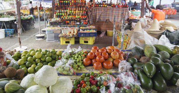 Chlordécone aux Antilles: l'Anses va évaluer les expositions par voie alimentaire