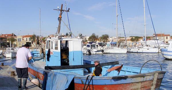 Méditerranée: des aides aux pêcheurs pour une gestion durable des stocks