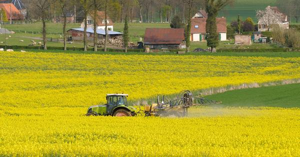 Pesticides: des consultations publiques sur les chartes lancées pendant l'été