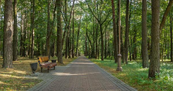 Nature4Cities: une plateforme pour mieux intégrer les solutions fondées sur la nature en milieu urbain