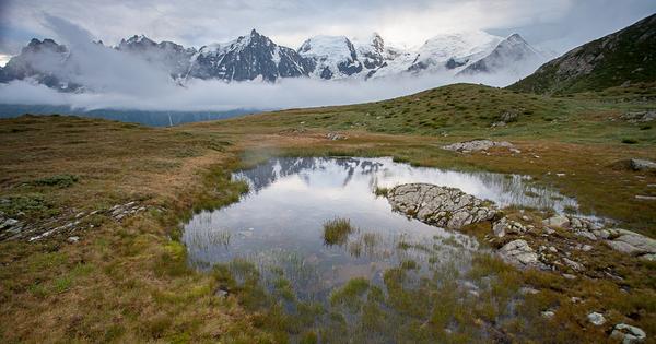 Un projet de sciences participatives pour dresser le portrait des zones humides d'altitude