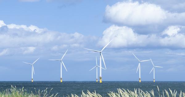 Éolien flottant: trois entreprises créent Océole en vue des prochains appels d'offres français