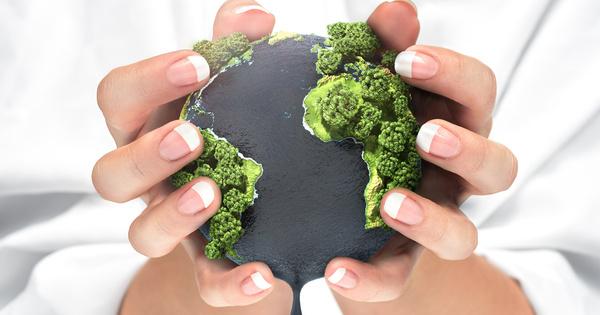 Jeudi 29 juillet, l'humanité aura consommé ses ressources naturelles de l'année