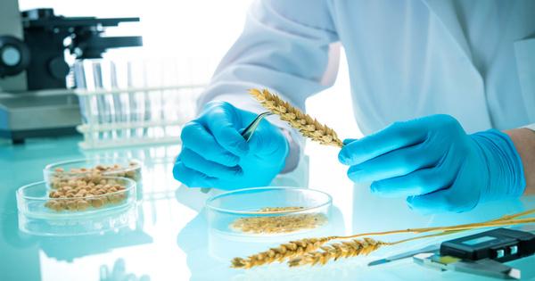 La dissolution du Haut conseil aux biotechnologies prévue dans une ordonnance en consultation publique