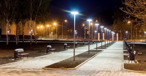 L'éclairage public impacte les populations de chenilles de mites